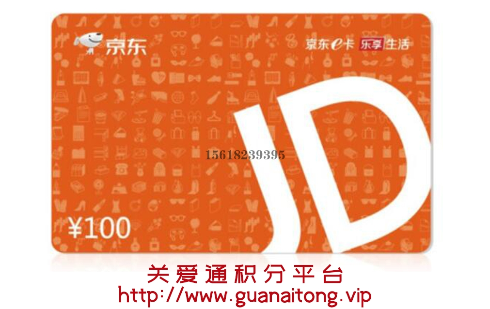 深圳京东E卡100元